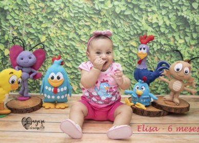 Elisa – 6 meses